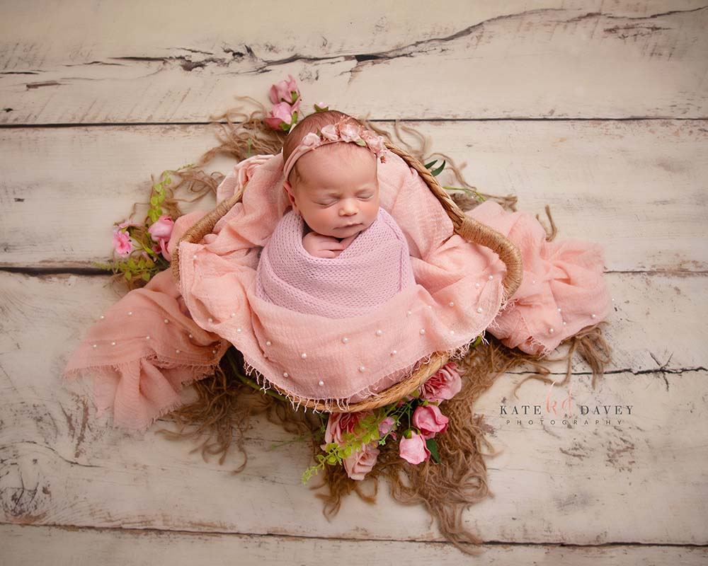 baby girl in a basket wrapped in pink with roses around her